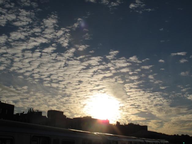 friday-december-28-2012-014.jpg
