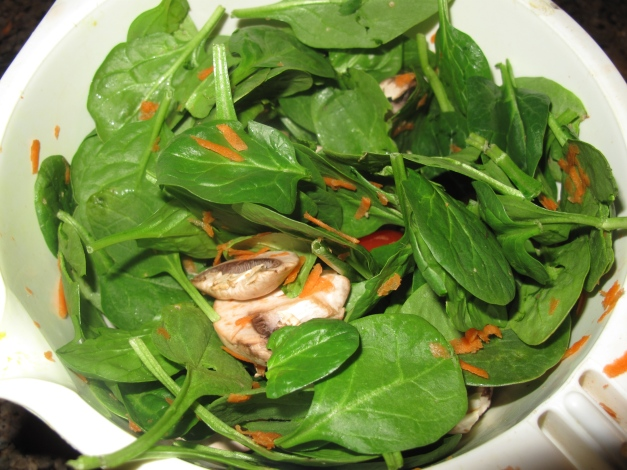 Spinach Salad!