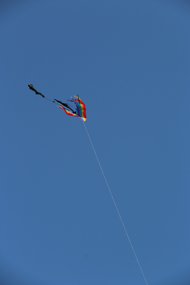 Saw this flying and it just had to get got.  Pride Month and all.