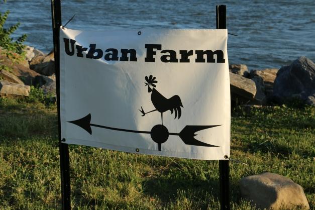 Urban Farm Signage