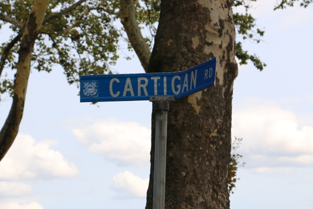 Cartigan