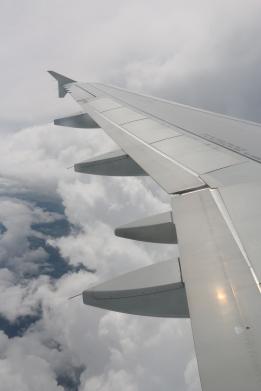 Mid Flight