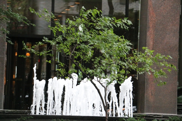 Waterfall BackGround Tree