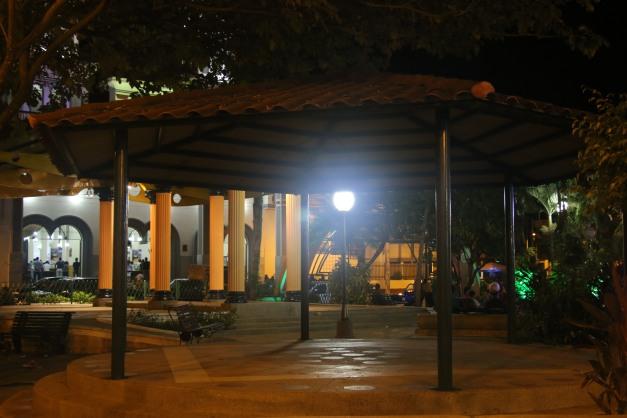 Park Interior Canopy Shot