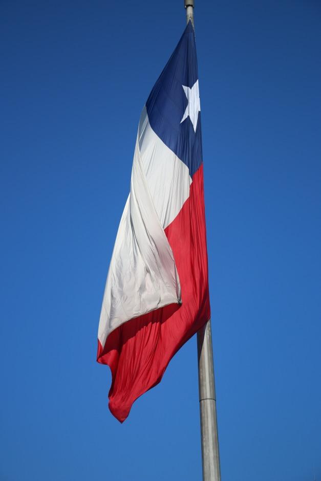 Chilean Flag 1