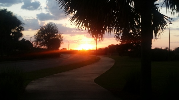 A Florida Sunset Pathway