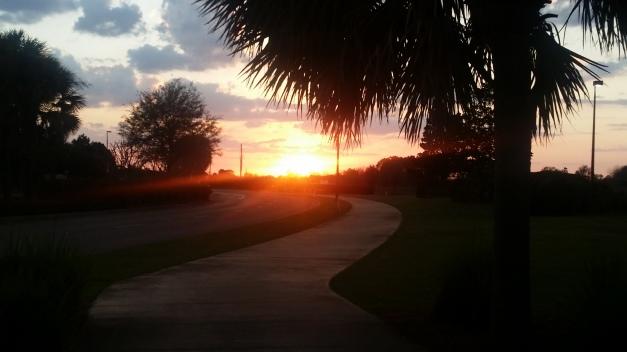 A Florida Sunset Pathway
